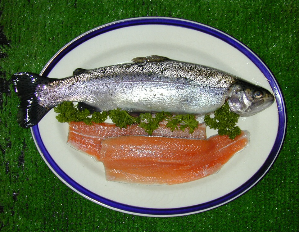 Fresh Trout from Bibury, Cotswolds